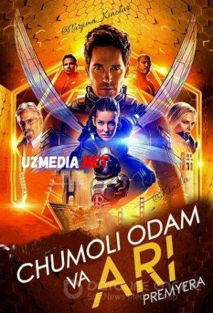 CHUMOLI ODAM VA ARI 2 / ЧЕЛОВЕК МУРАВЕЙ И ОСА Uzbek tilida O'zbekcha tarjima kino 2018 HD tas-ix skachat