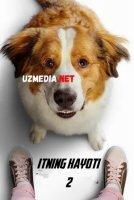 Itning hayoti: Sadoqat timsoli 2 Uzbek tilida O'zbekcha tarjima kino 2019 HD tas-ix skachat
