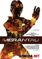 Merantau / Mirantau Uzbek tilida O'zbekcha tarjima kino 2009 HD tas-ix skachat
